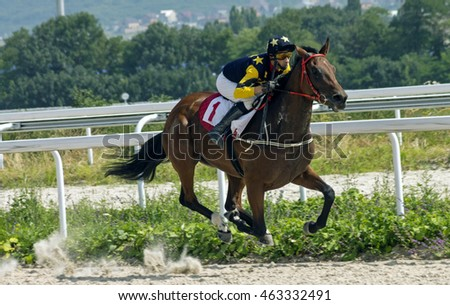 Horse race for the traditional prize Prohorova in Pyatigorsk,the largest in Russia.