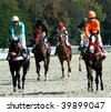 Horse race. Hippodrome in Pyatigorsk,Northern Caucasus,Russia. - stock photo