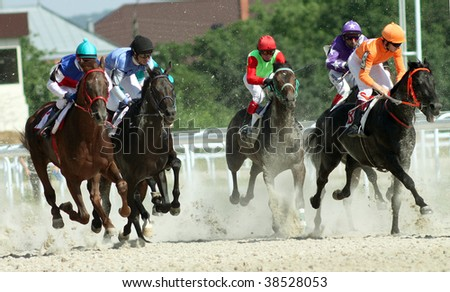 Horse race.Hippodrome in Pyatigorsk,Northern Caucasus,Russia.