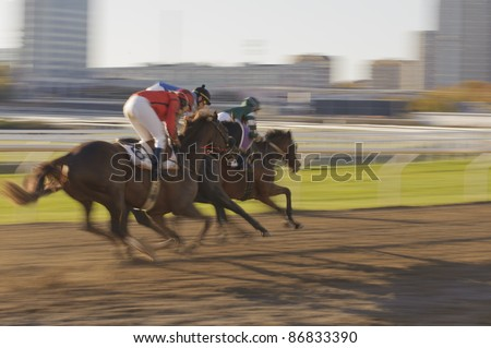 Horse race in an urban environment with evening sunlight