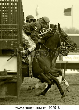 horse race in black & white - stock photo
