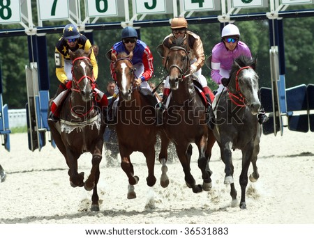 Horse race,Northern Caucasus,Russia.