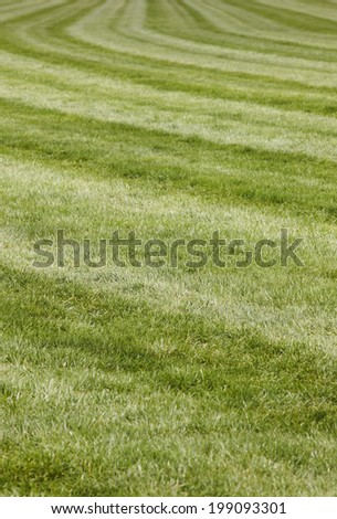 Horse race track with curve line. Vertical format - stock photo