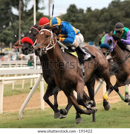 Horse Racing in Bridgetown, Barbados. Sandy Lane Gold Cup - stock photo