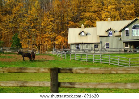 Horse Ranch in the beautiful colors of fall - stock photo