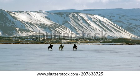 Horse ride on lake Myvatn, Iceland - stock photo