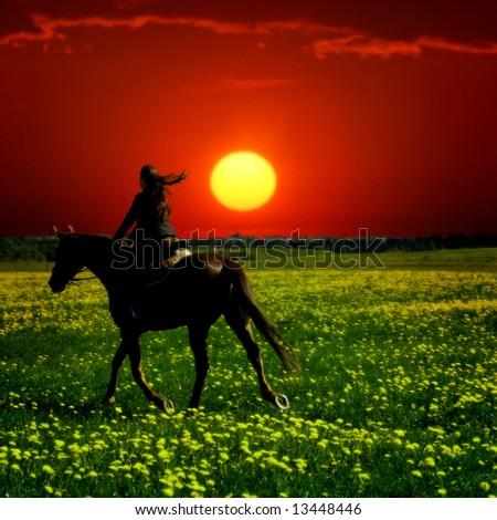 horse rider - stock photo