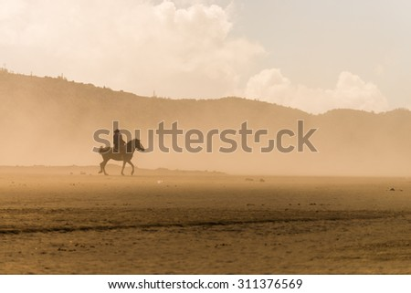 horse rider riding on desert in sand storm