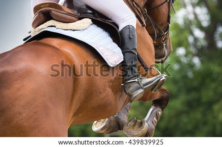 Horse Riding, Dressage themed photo - stock photo