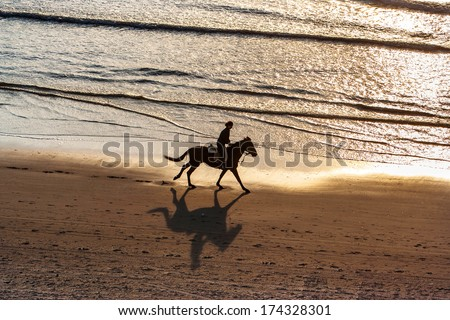 Horse riding on the beach at sunset  - stock photo
