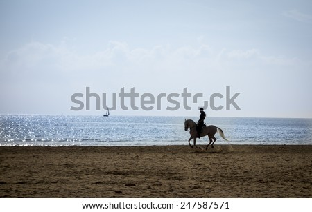 Horse riding silhouette at the beach - stock photo