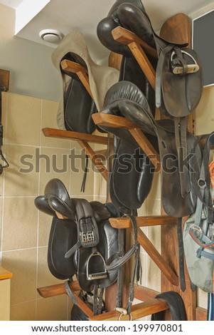 horse sadless - stock photo