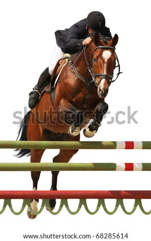 Horse show jump isolated on white - stock photo