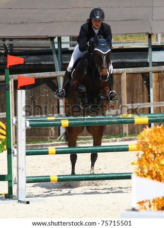 Horse showjumping detail - stock photo