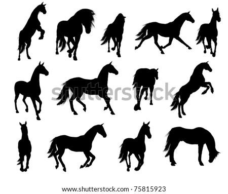 Horse Silhouette - stock photo