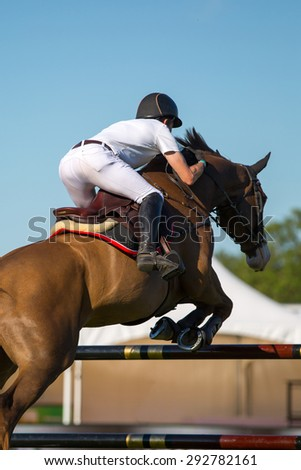 Horse Sports, Equestrian, Jumping