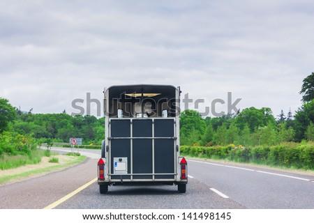 Horse transport on motorway - stock photo