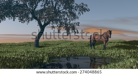 horse under blossoming cherry tree in grassland  - stock photo