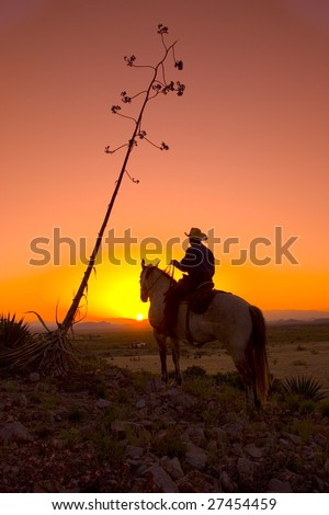 Horseback Rider At Sunset / Sunrise - stock photo