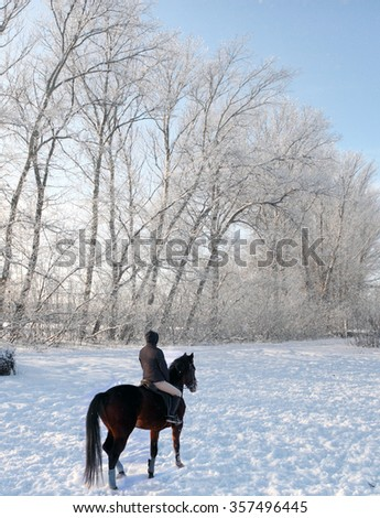 Horseback rider follow a snow covered trail into a forest - stock photo