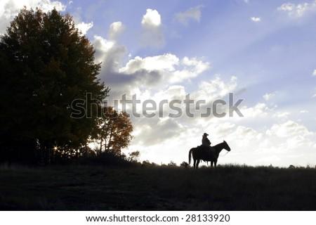 Horseback Silhouette - stock photo