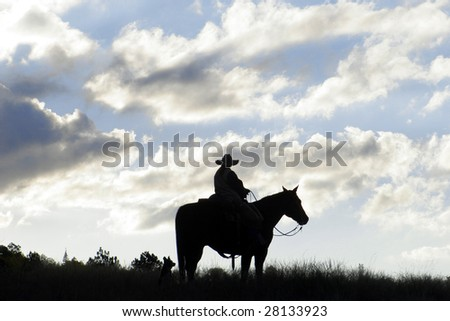 Horseback Silhouette - stock photo