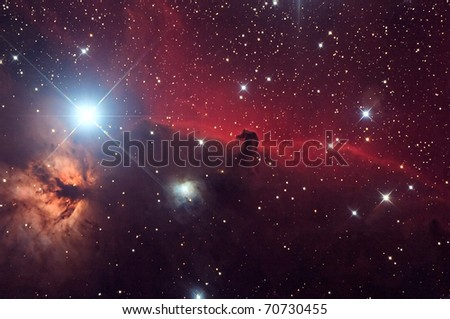 Horsehead and flaming tree nebula in space - stock photo