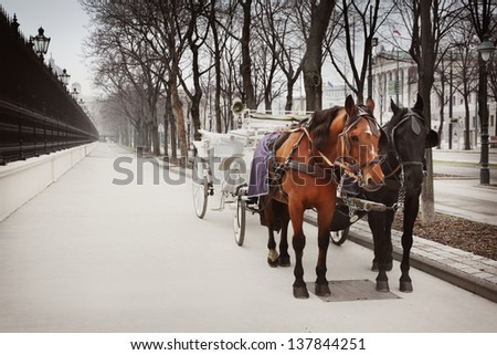 Horses and carriage - stock photo