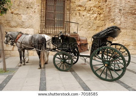Horses and carriage for sightseeing in Cordova, Spain - stock photo