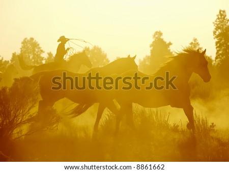 Horses on the Run - stock photo