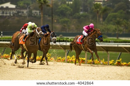 Horses racing - stock photo