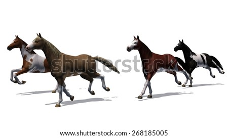 horses - running herd on white background