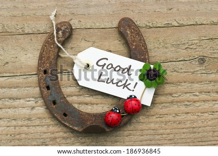 Horseshoe, Leafed clover and ladybugs on wooden board/good luck/english - stock photo
