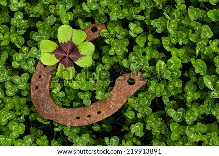 horseshoe with four leaf clover in clover field - stock photo