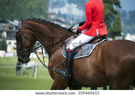 horsewoman in uniform  at a jumping show - stock photo