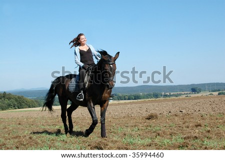 Horsewoman rides a horse across the field. Hanoverian.