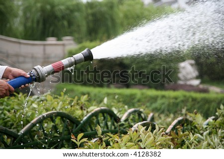 hose spraying crops with water - stock photo