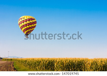 Hot air balloon flying over corn fields against blue sky - stock photo