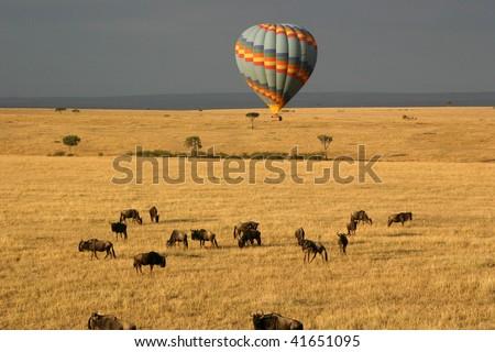 Hot Air Balloon Over the Masai Mara - stock photo