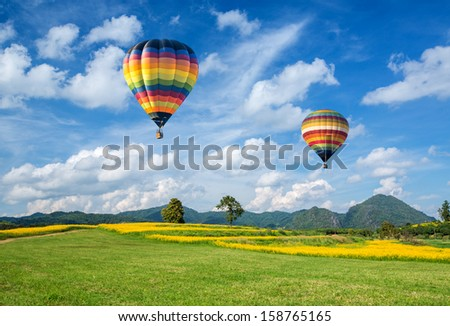 Hot air balloon over the yellow flower field with mountain and blue sky background - stock photo