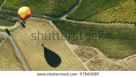 Hot Air Balloon over Vineyards - stock photo