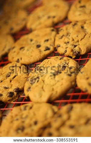 Hot Baked Chocolate Chip Cookies - Stock Image