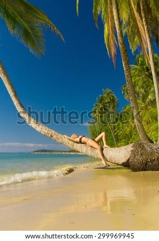 Hot Blonde Under Palm  - stock photo