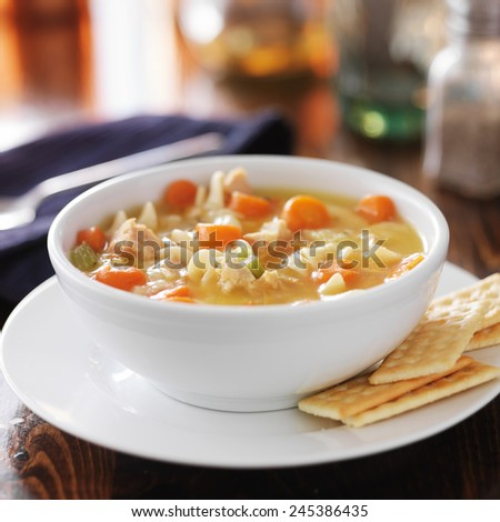 hot bowl of chicken noodle soup - stock photo