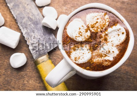 Hot chocolate with marshmallow in a white cup - stock photo