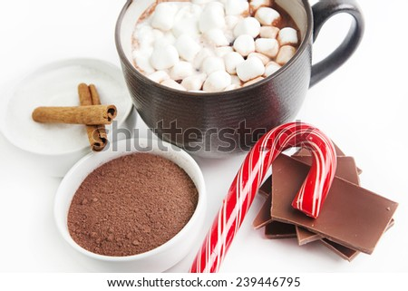 Hot Cocoa ingredients with candy cane isolated on a white background. - stock photo