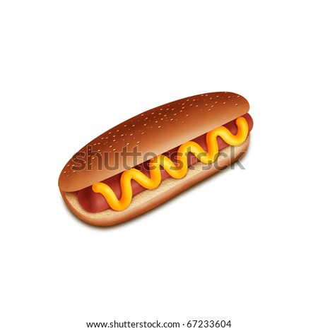 hot-dog on white background - stock photo