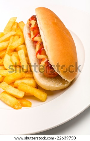 hot dog with fries on plate - stock photo