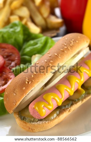 Hot dog with pickles, onion and mustard served with French fries (Selective Focus, Focus on the front end of the sausage) - stock photo