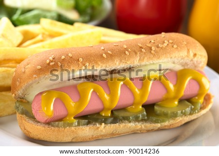 Hot dog with pickles, onion and mustard served with French fries (Selective Focus, Focus on the left end of the sausage) - stock photo